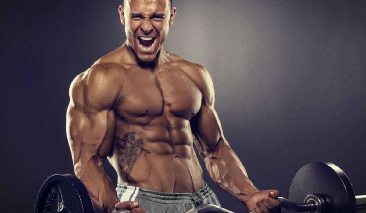 صورة اضرار هرمون التستوستيرون لكمال الاجسام , تعرف على هرمون الذكورة