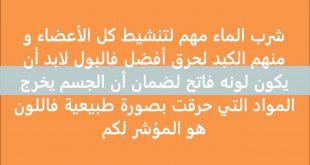 صورة رجيم العشر نصائح , اتباع النصائح يجعل جسمك اكثر رشاقة