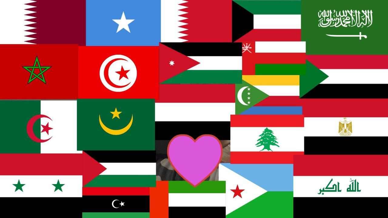 صورة كم عدد الدول العربية في افريقيا , افريقيا و ما تحتوية من دول عربية