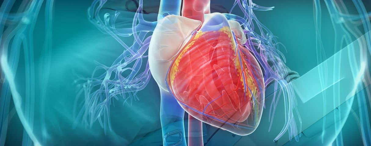 صورة اسباب ارتفاع ضربات القلب , تعرف على اعراض ارتفاع ضربات القلب