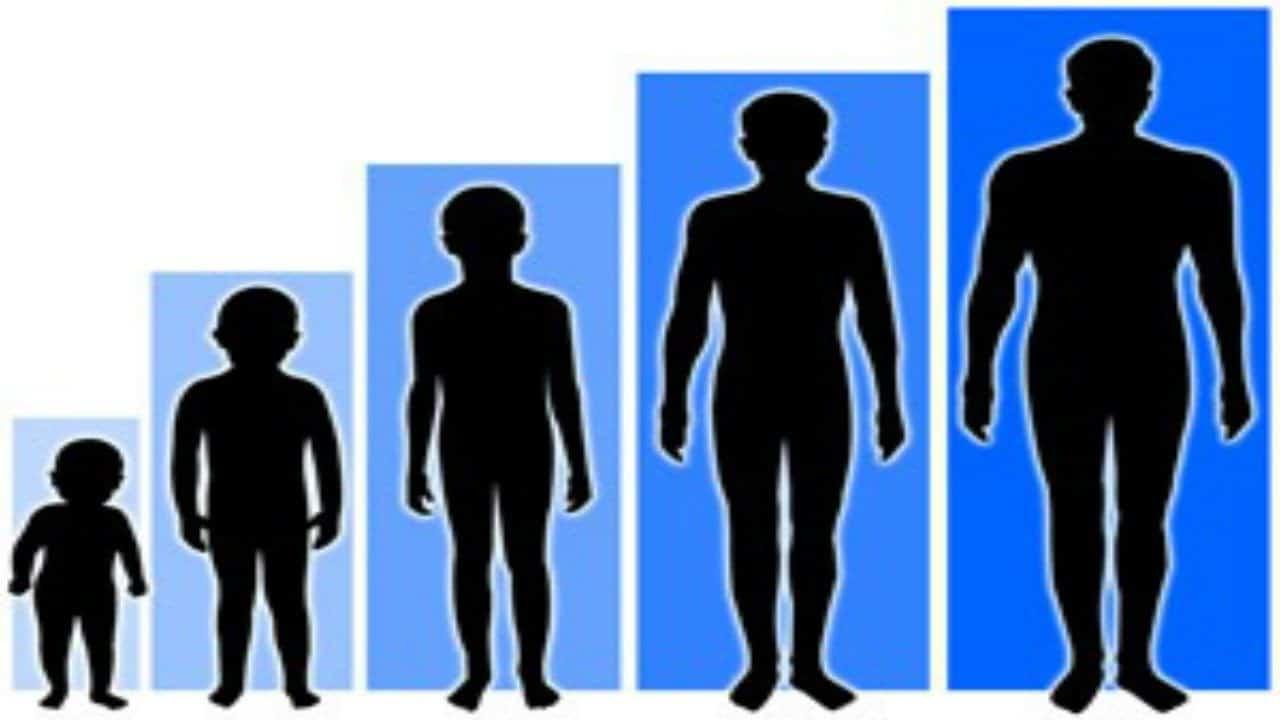 صورة تفسير حلم طول القامة لابن سيرين , طول القامة هو التضارب فى المعنى