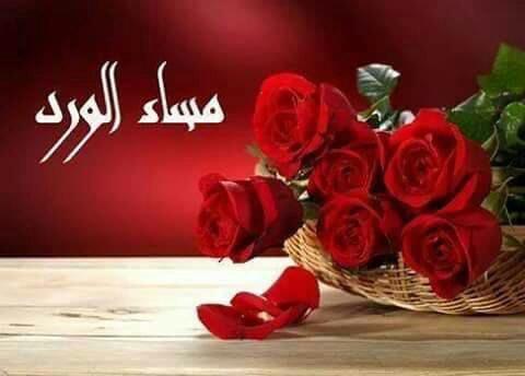 صورة احلى مساء الورد , من اجمل رسائل التمسيه الرائعه