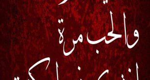صور رسائل حب مصرية للموبايل , حب على طريقتى