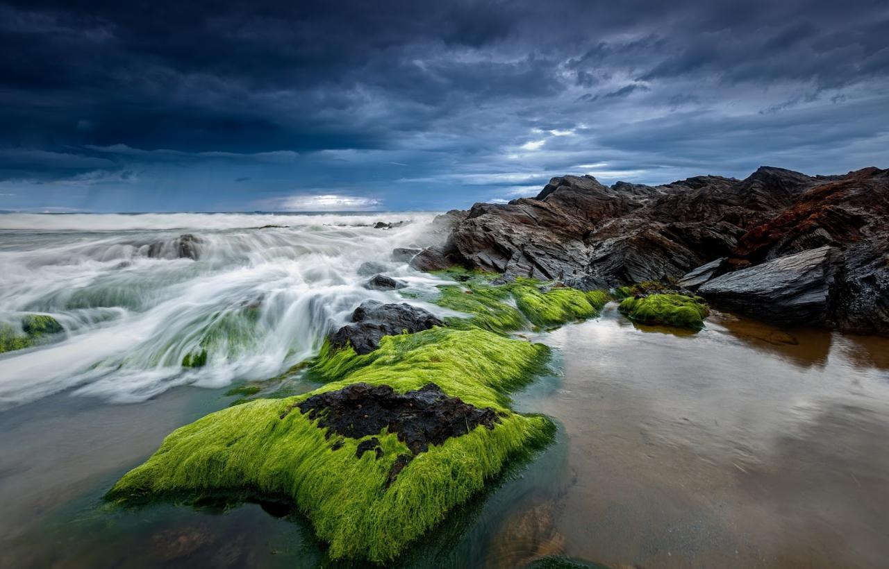صورة صور ورد على البحر , البحر و ما يحمل من رسائل 3317 1