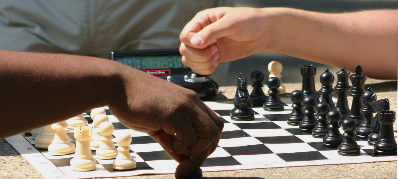 صورة كيفية لعب الشطرنج , اتعلمي واغلبي جوزك