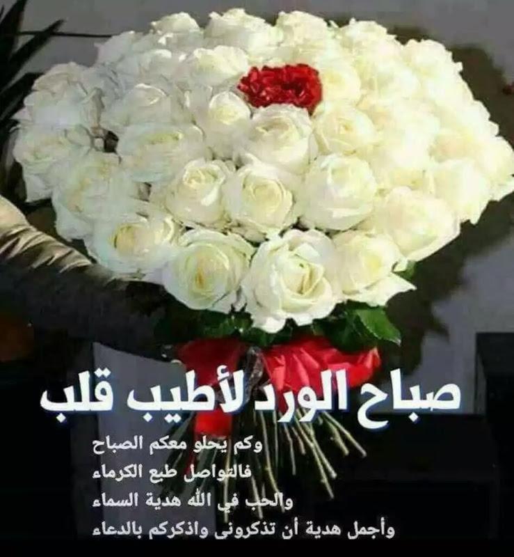 صورة صباح الورد الابيض , صباحك ابيض بلون قلبك