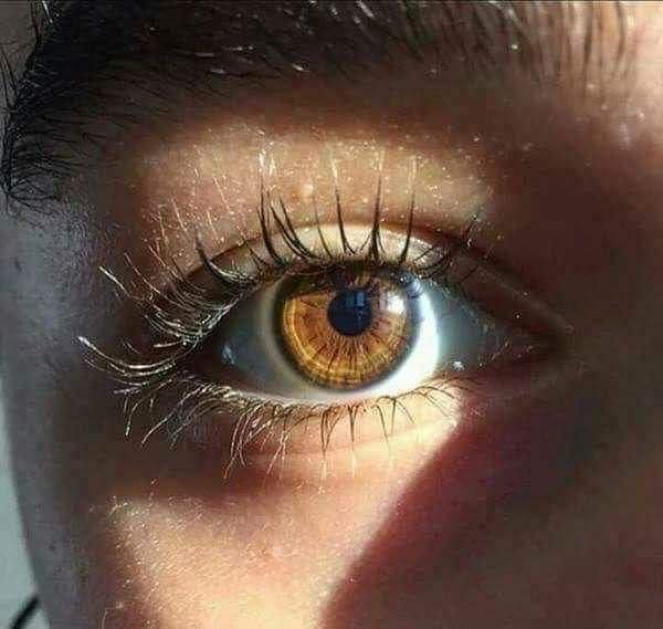 صورة صور احلى عيون في العالم , سحر العيون و تاثير جمالها علينا