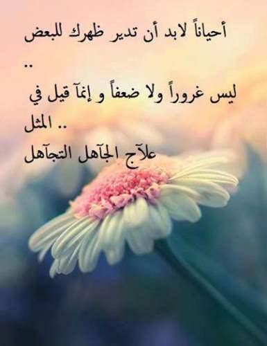 صورة اجمل العبارات عن الحياة , كلمتين على لسانى