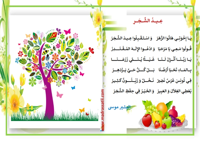 صورة قصيدة عن الشجرة , حكم و اشعار عن الشجره
