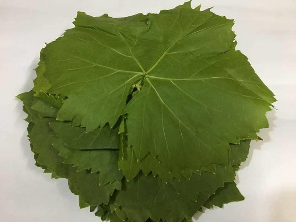 صورة اكل ورق العنب في المنام , تفسير الورق العنب في الرؤية