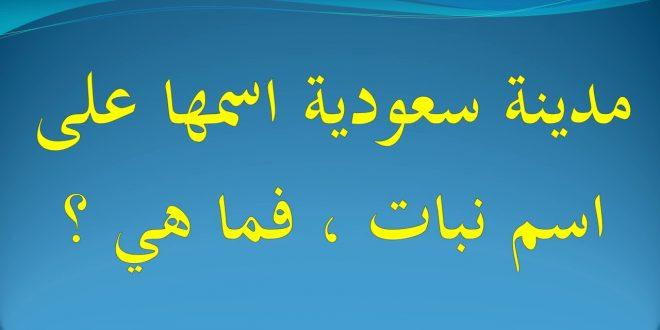 صورة مدينه سعوديه اسمها على اسم نبات , اليكم حل لغز هذه المدينه بالصور