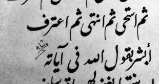 صورة اجمل بيت شعر عربي , شعر عربي معبر