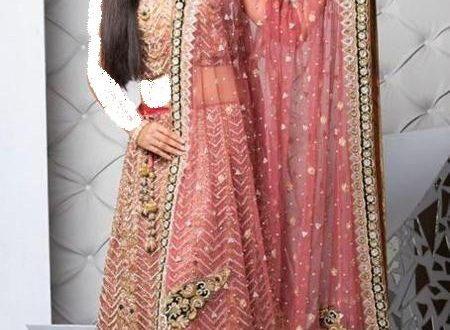 صورة فساتين هندية للاعراس , غيري اللوك و كانك هنديه