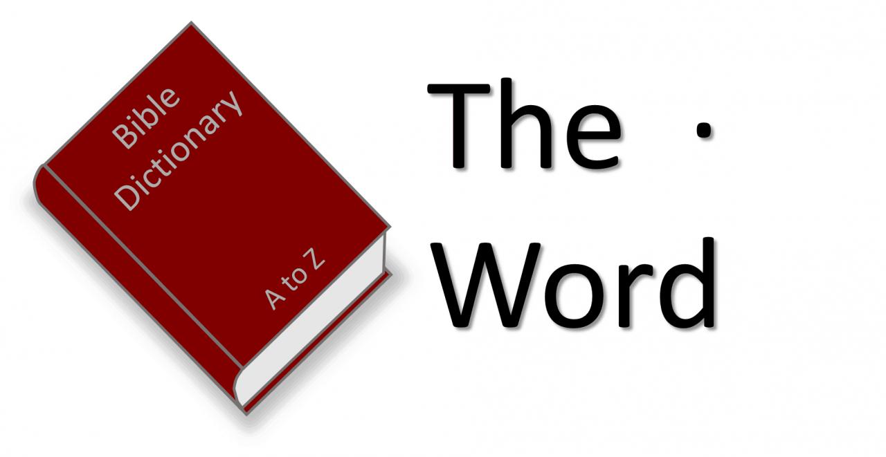 صورة معنى كلمة شاطر , بعض معاني الاسماء