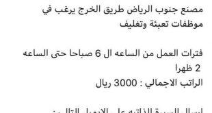 صورة وظائف نسائية في الرياض , حقوق المراه في العمل بالرياض