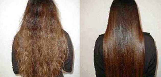 صورة كيفية تمليس الشعر , شعرك طري و ناعم بوصفات طبيعية 100%
