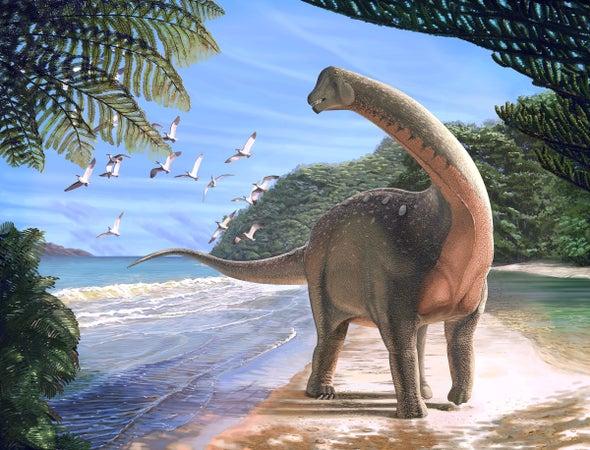 صورة بحث عن الديناصورات , معلومات اول مرة تعرفها عن الديناصورات