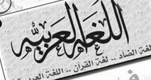 صورة خلفيات عن اللغة العربية , افتخر بلغتك و عززها