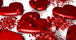 صورة سبب عيد الحب , لماذا سمي عيد الحب هكذا