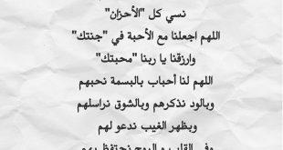 صورة قصيدة عن حب الوطن , شارك قصائد وطنيه بمناسبه اليوم الوطني