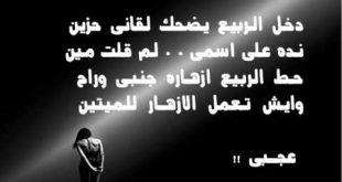 صورة اشعار صلاح جاهين الحزينة , اشعر بكل كلمه من اشعار صلاح جاهين