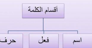 صورة اقسام الكلمة في اللغة العربية , فقره من النحو في اللغه العربية