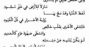 صورة اسم خلود في بيت شعر , الخلود في الابيات الشعريه تعرف عليها