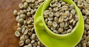 صورة فوائد القهوة الخضراء , هل تشرب القهوه الخضراء لها فوائد